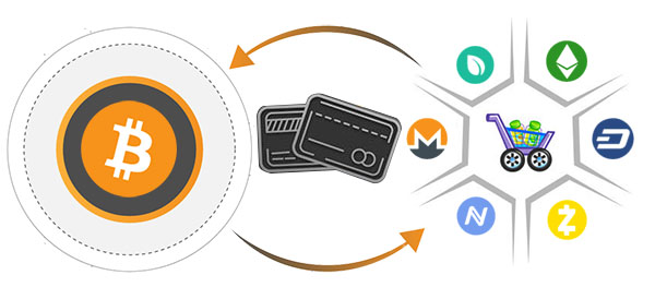 Cryptocurrency Payment Processor Development - Cryptosoftwares
